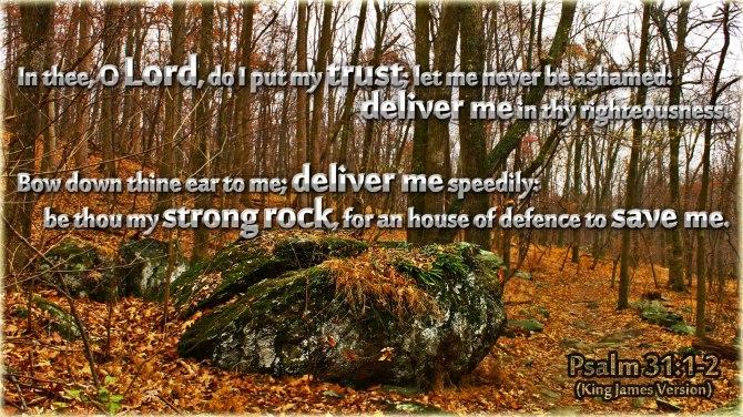 Psalms 31:1-2