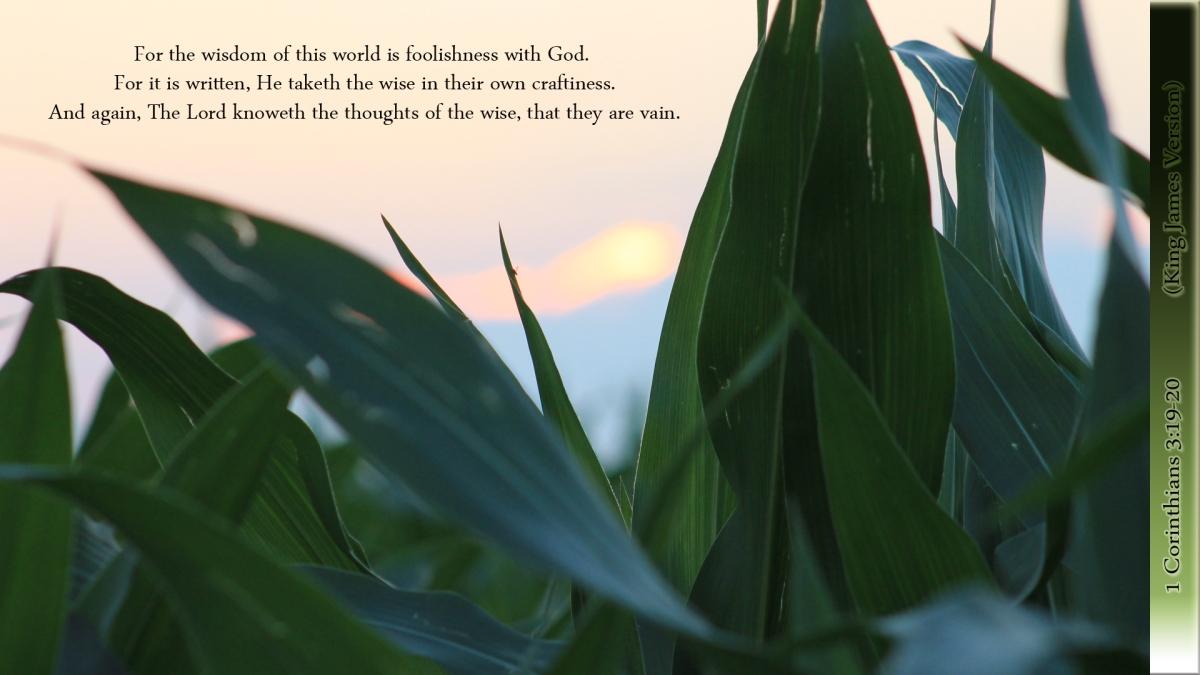 1 Corinthians 3:19-20