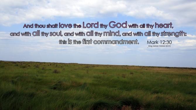 Mark 12:30