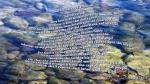 Psalm 14:1-7