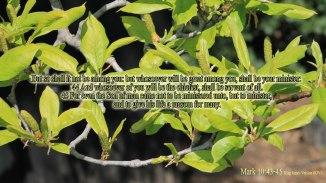 Mark 10:43-45 (1920x1080)